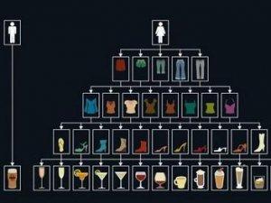 Різниця між чоловіком і жінкою