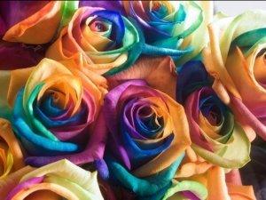 Дивовижні квіти.
