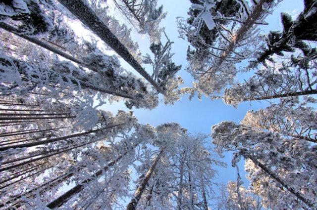 Фото зими від фотографа kari liimatainen