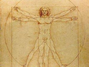 Цікаві факти про організм людини.