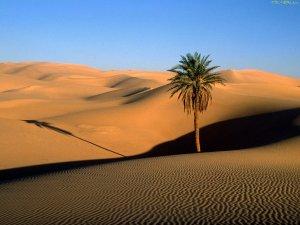 Чому в пустелі немає води?