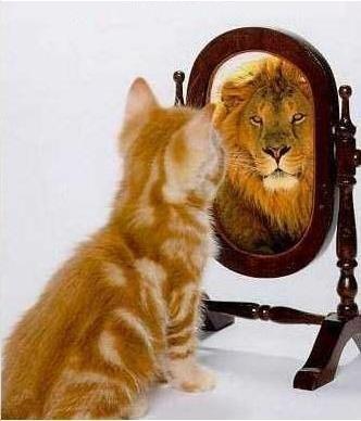 Що таке взагалі ця самооцінка