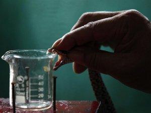Зміїну отруту можна пити