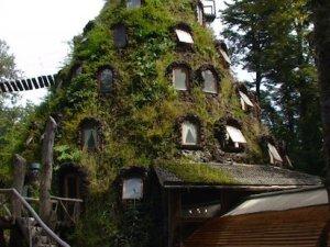 У заповіднику під назвою Huilo Huilo є готель в жерлі погаслого вулкана(Фото)