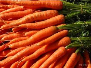 Морква може викликати залежність
