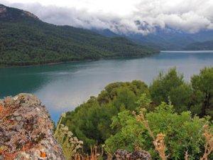 Які існують програми спостережень за якістю поверхневих вод?