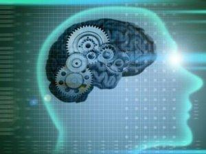 За законами генетичної пам'яті